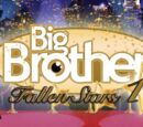 Big Brother 10