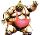 Jumbo Flapjack