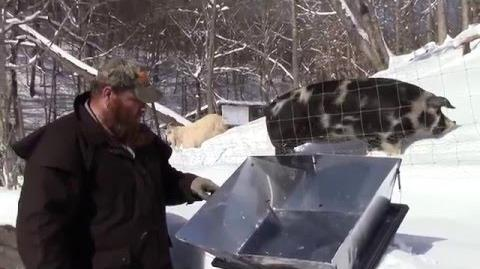 Gotowanie solarne w warunkach zimowych - Filmy