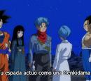 Episodio 67 (Dragon Ball Super)
