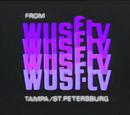 WUSF-TV
