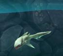 Enemy Electro Shark
