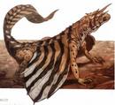 Draco (Dracomicros hospes).png