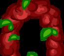 Le Collier de Fleurs de Noël
