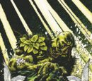 Swamp Thing (Post-Flashpoint)