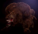 Bear Beast