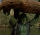 The Incredible Hulk (TV series) Season 1 2
