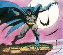Batman Family Vol 1 17/Images