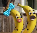 Famille banane