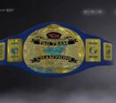 ACW Impulse Tag Team Championship