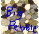 Big Pebble Network