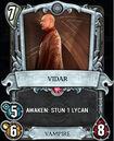 Card game Vidar.jpg