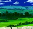Wioska Grass