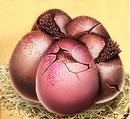 Dresel Eier.png
