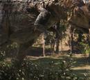 Carnotaurus (Terra Nova)