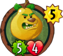 Grizzly Pear