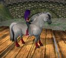 Hannah Lightningstar/Horse Pictures