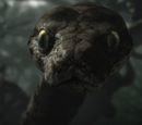Kaa (The Jungle Book 2016)
