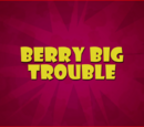 Berry Big Mess