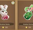 Rosebud Bunny