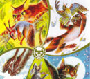 Общая информация о племенах