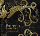 Melinda Bagman/Fantastic Beasts