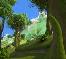 Forêt de l'Est
