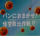 Episodio 17 (Dragon Ball GT)