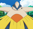 Kahuna's Pokémon