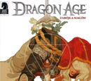 Dragon Age: Zabójca magów
