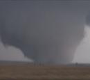 Tornadoes of 2020 (NoJO)