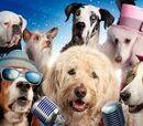 Pup Star Wiki