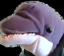 Loan Dolphin