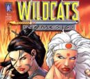 Wildcats: Nemesis Vol 1 3