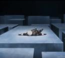 Kamui's Dimension