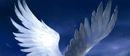 White Raven by by Sandara, Fantasy Flight Games©.jpg