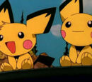 PK012: Camp Pikachu