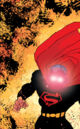 All Star Batman and Robin, the Boy Wonder Vol 1 4 Textless Variant.jpg