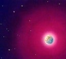 Arrivederci Goku