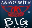 Aerosmith: Big Ones You Can Look at (1994)