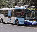 Volvo B7RLE Custom Coaches CB80