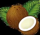 RogueMeow/Coconutseed