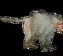 Hamadryas Baboon (Artifex)