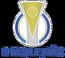 Campeonato Brasileiro de Futebol - Série C