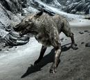 Eiswolf (Skyrim)