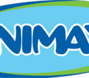 Animax (Republic of Juan Carlos)
