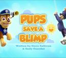 Pups Save a Blimp's Pages