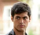 Alec Lightwood (Serie)