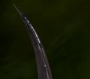 Glaive de Néo-traqueuse