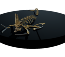 Reaper Leviathan Skeleton